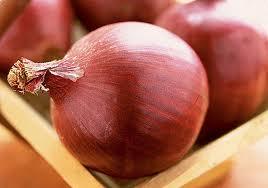 svogūnų ligos ir kenkėjai