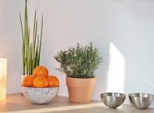 decorated-kitchen-kambariniai-augalai-vazos-stalas
