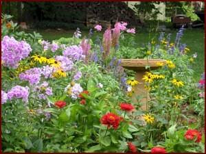 gėlių sėja