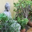 Budos skulptūrėlės sode