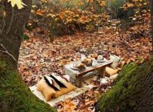 rudens lapai stalas pagalveles