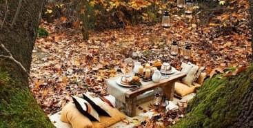 Rudeninių lapų kilimą pasitiesus